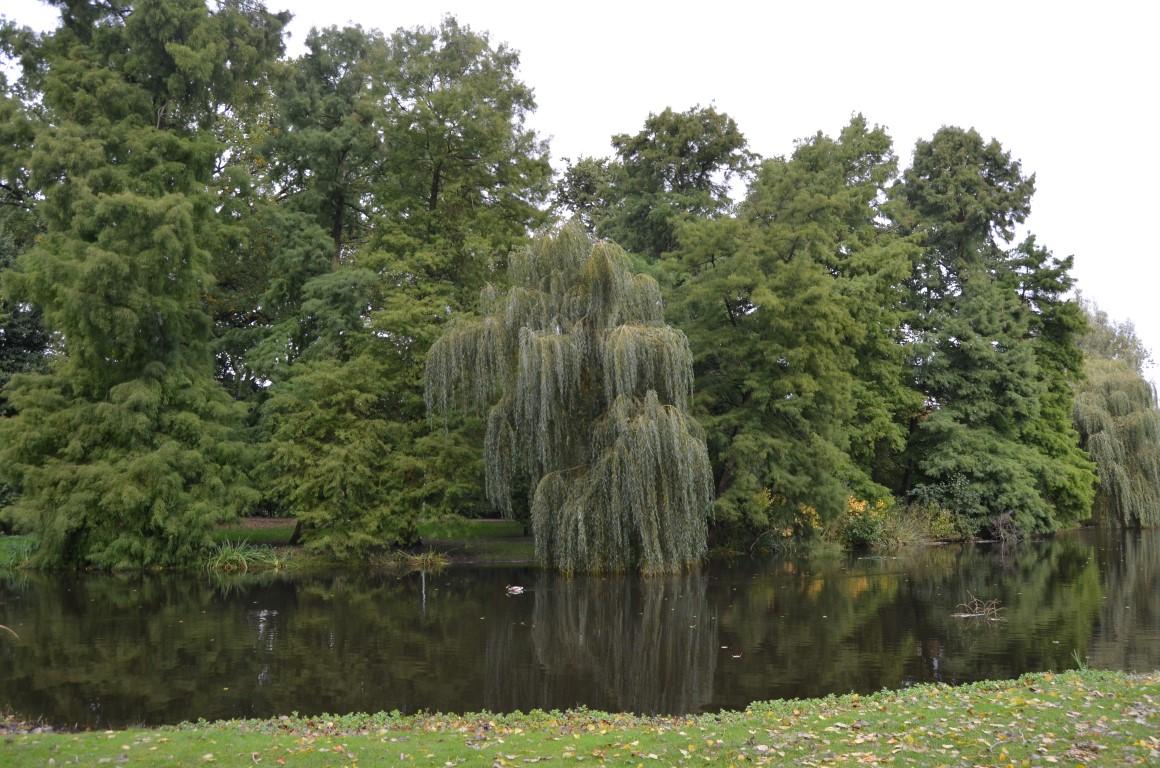 Amsterdam Seyahat Rehberi amsterdam seyahat rehberi Amsterdam Seyahat Rehberi amsterdam 04